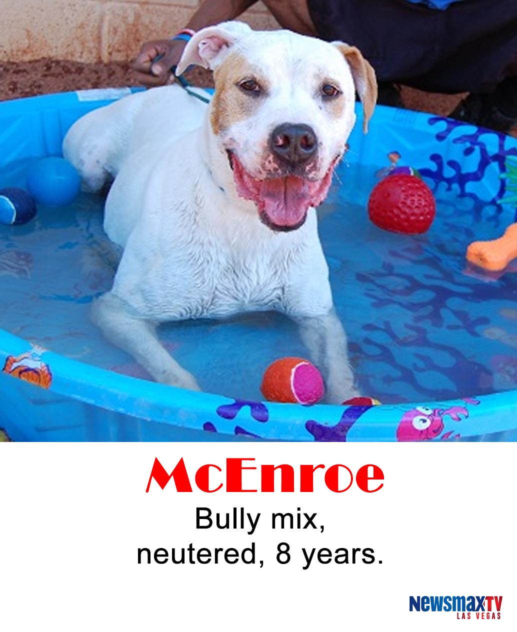mcenroe-large-1